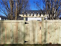 <b>6 foot high Pressure Treated Privacy Fence with Fascia Board and Gate Trellis</b>